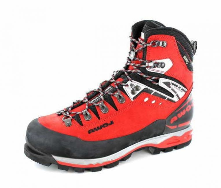 Lowa Mountain Expert GTX EVO Men