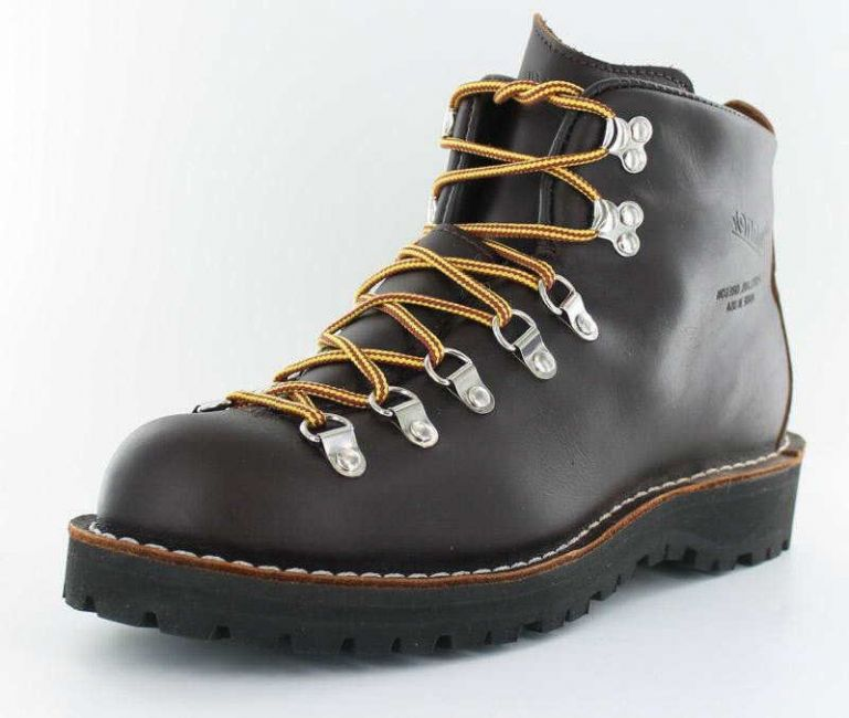 Danner Mountain Light GTX
